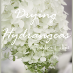 Drying+Hydrangeas+Title+Page+-+BLOG