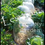 Title+Pag+Lessons+from+my+garden