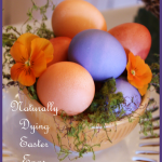 Title+Page+Naturally+Dyed+Easter+Eggs+BLOG