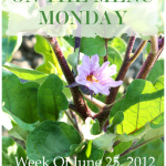 Week+Of+June+25+2012+-+BLOG