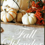 Fall+Splendor+-+BLOG
