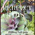 Perfect+Pots+Title+Page+-+BLOG