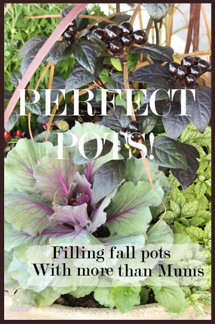 PERFECT POTS~ Fall Planting Tips