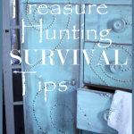 Treasure+Hunting+Survival+Tips+-+BLOG