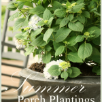 Summer+Porch+Plantings+2013+-+BLOG