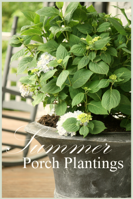 SUMMER PORCH PLANTING