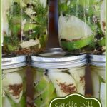 Garlic+Dill+Refrigerator+Pickles+Title+Page+-+BLOG