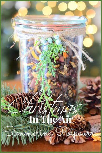 CHRISTMAS IS IN THE AIR~ SIMMERING POTPOURRI