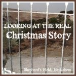 SS+12-23-13+Looking+At+The+Real+Christmas+Story-stonegableblog