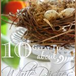10 GREAT TIPS ABOUT WHITE DISHES