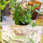 5+Tips+for+Early+Spring+Table+and+Home-TitlePage-stonegableblog.com_