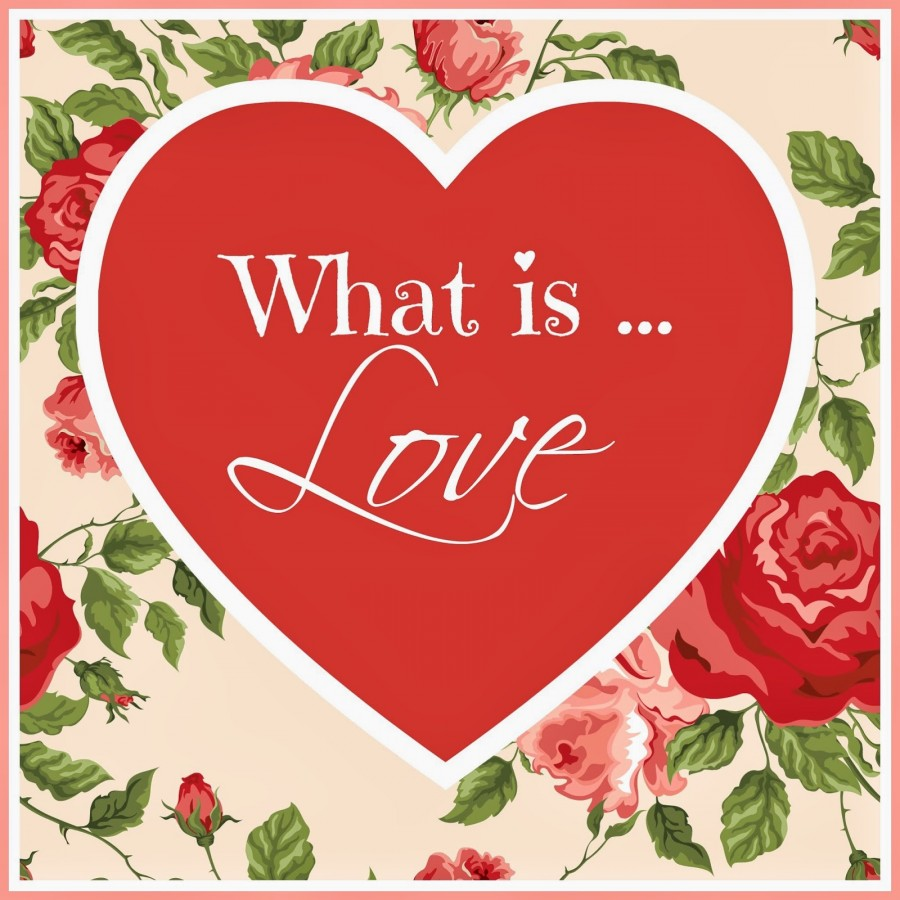 SUNDAY SCRIPTURE~ WHAT IS LOVE?