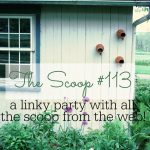 THE+SCOOP+4-7014-stonegableblog