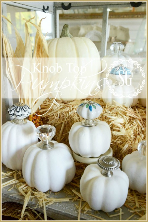 KNOB TOP PUMPKINS-very chic way to decorate a pumpkin-stonegableblog.com