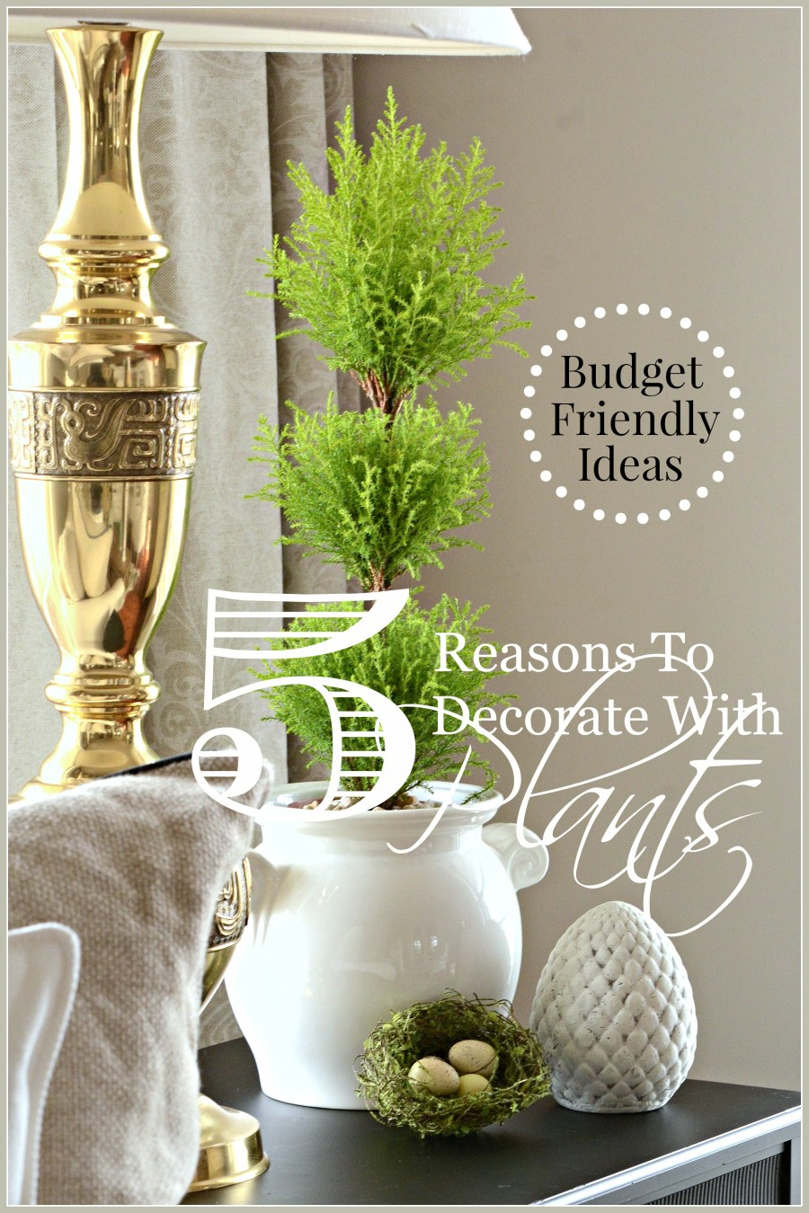 5 REASONS TO DECORATE WITH PLANTS… BUDGET FRIENDLY DECOR
