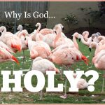 WHY IS GOD HOLY?