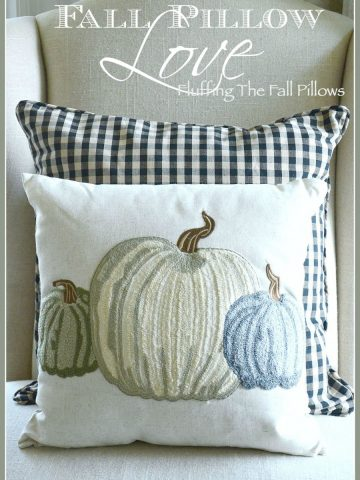 FALL PILLOWS-Enjoying the beauty of fall in your decor-stonegableblog.com