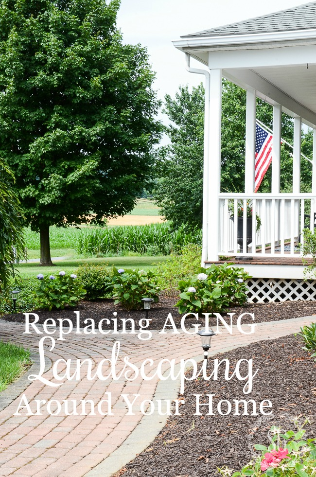 REPLACING AGING LANDSCAPING- A COMMON SENSE GUIDE