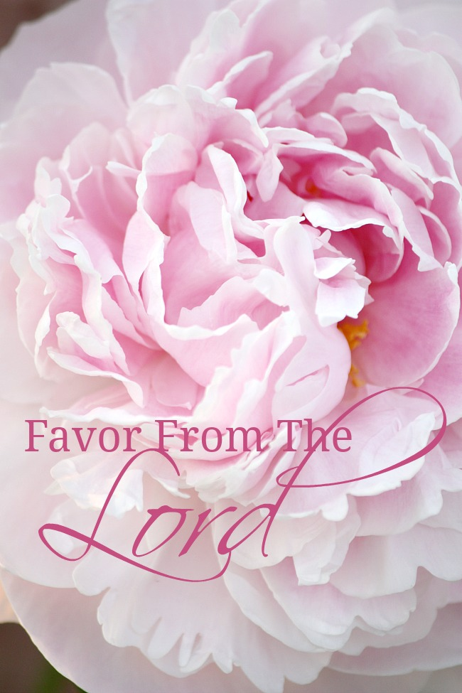 FAVOR FROM THE LORD