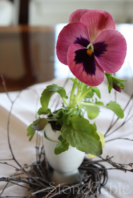 Pansies In Eggshell Pots