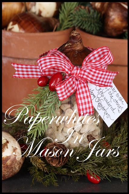 Paperwhites+In+Mason+Jars+-+BLOG1