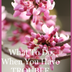 SUNDAY SCRIPTURE~ WHAT TO DO WHEN YOU HAVE TROUBLE IN YOUR LIFE, PART II