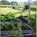 Garden+June+21+stonegableblog.com+TITLE+PAGE