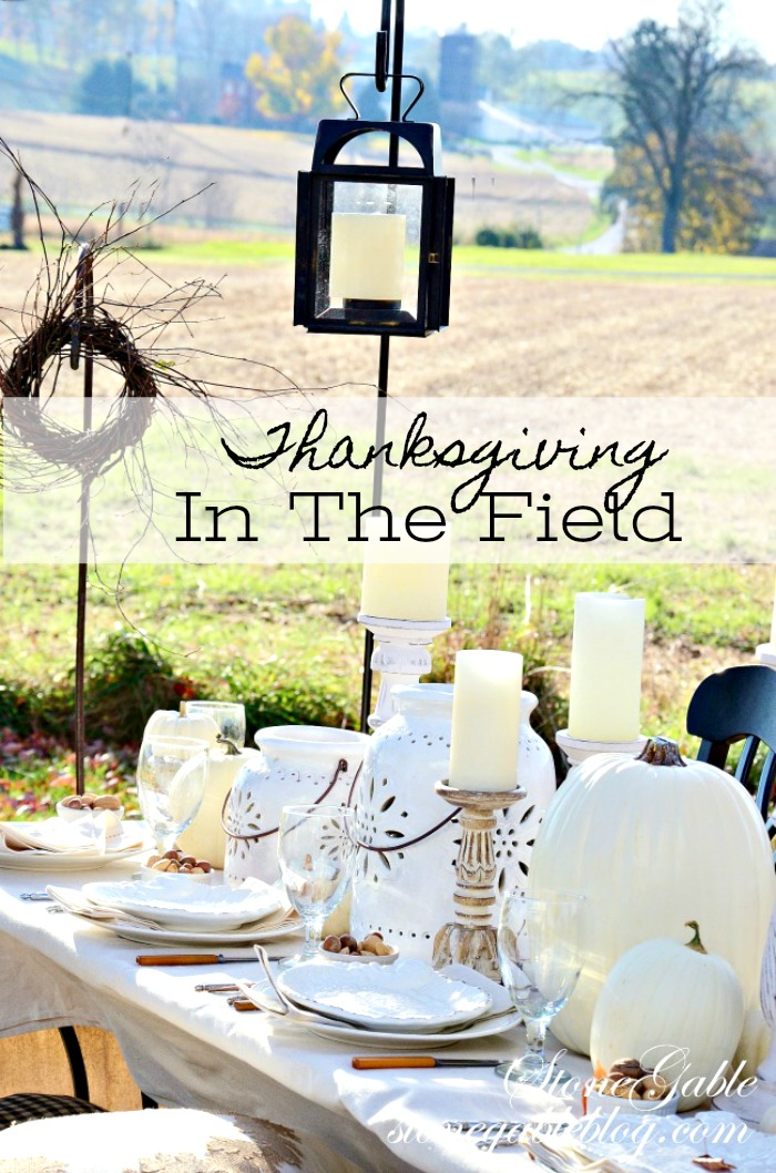 Beautiful tablescape in a farm field. Lots of ideas and inspiration #fall #falltablescape #thanksgiving #thanksgivingtablescape #thanksgivingtableideas #autumn #stonegable #pumpkins #whitedishes