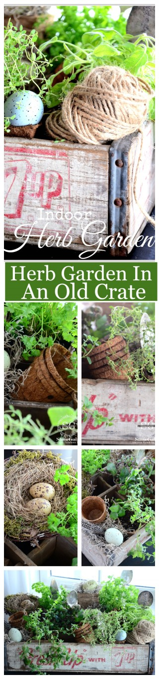 AN INDOOR HERB GARDEN IN AN OLD CRATE- easy and usable and great decor-stonegableblog.com