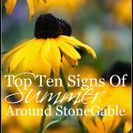 Top+10+Signs+Of+Summer+Around+StoneGable-stonegablelbog
