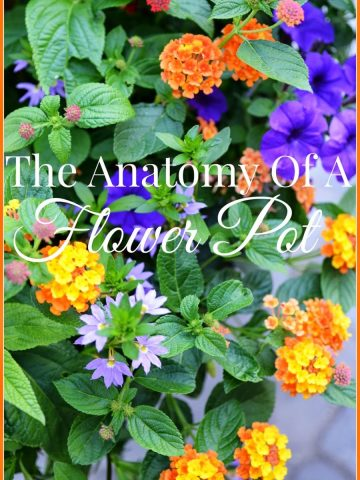 THE+ANATOMY+OF+A+FLOWER+POT-TITLE+PAGE-stonegableblog