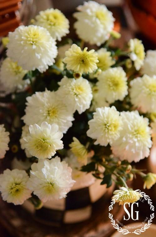 FALL KITCHEN TABLE VIGNETTE-white mums-Courtley small pitcher-stonegableblog.com