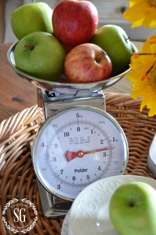 Farmhouse Style- kitchen scale-stonegtableblog.com