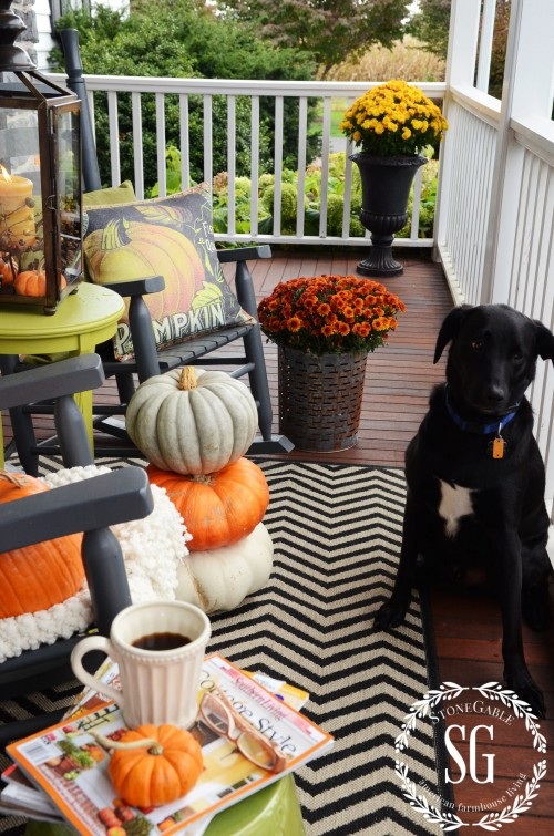 FALL ROCKING CHAIR VIGNETTE-Beau the dog-stonegableblog.com