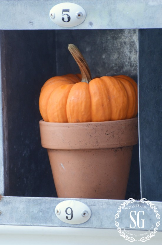 FALL AT THE POTTING BENCH-pumpkin in pot-stonegableblog.com