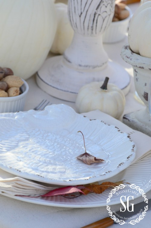 outdoor thanksgiving-simple turkey plates-stonegableblog