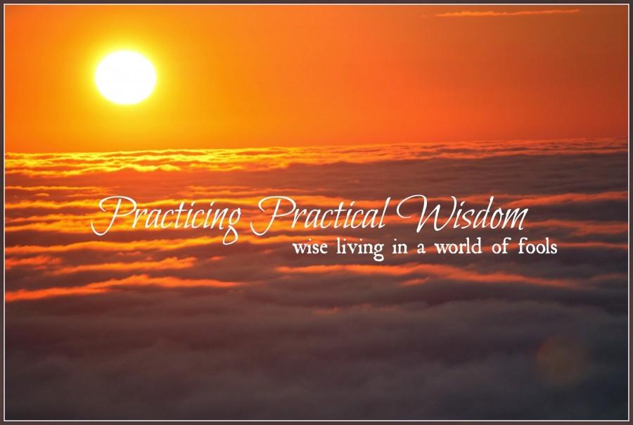 SS-+1-19-14+Practicing+Practical+Wisdom-stonegableblog.com_1