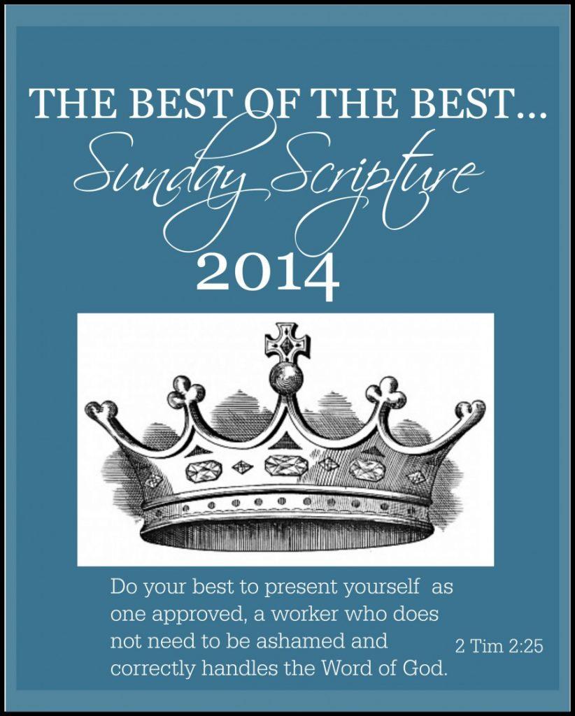 THE BEST OF THE BEST SUNDAY SCRIPTURES OF 2014-stonegableblog.com