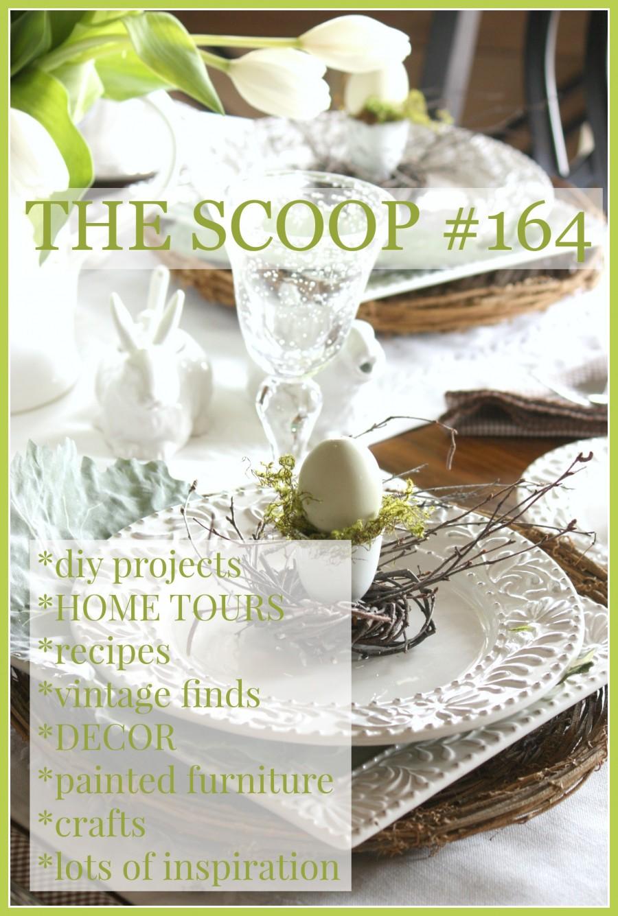 THE SCOOP #164