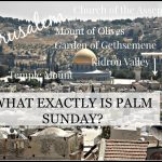 WHAT EXACTLY IS PALM SUNDAY-stonegableblog.com