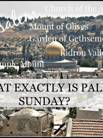 WHAT EXACTLY IS PALM SUNDAY-stonegableblog.com