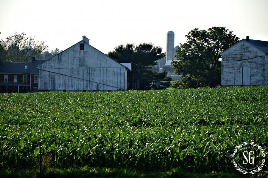 WHAT IS FARMHOUSE STYLE- farm-stonegableblog.com