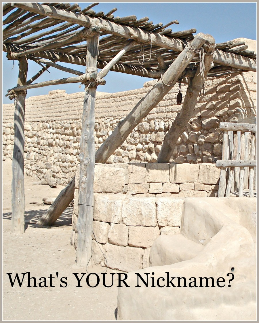 WHAT'S YOUR NICKNAME?