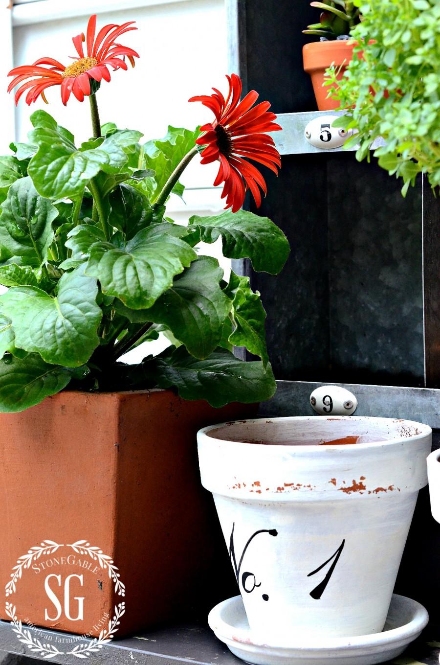 SUMMER POTTING BENCH-red gerbera daisies-stonegableblog.com
