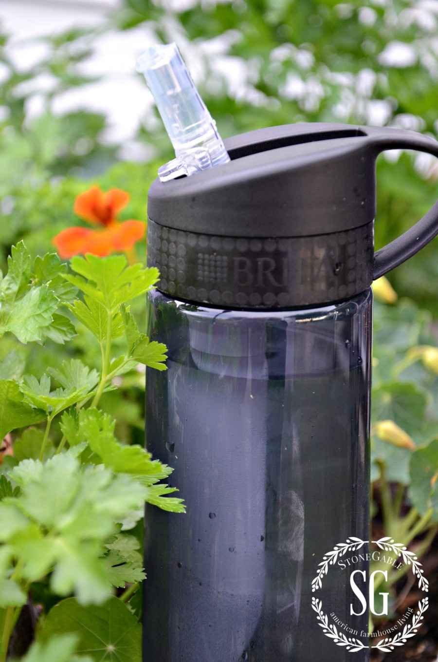 5 IMPORTANT THINGS TO KNOW WHEN GARDENING-brita water bottle-easy sip straw-stonegableblog.com