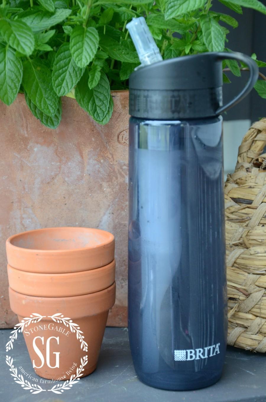 BRITA WATER BOTTLE-with filter-stonegableblog.com