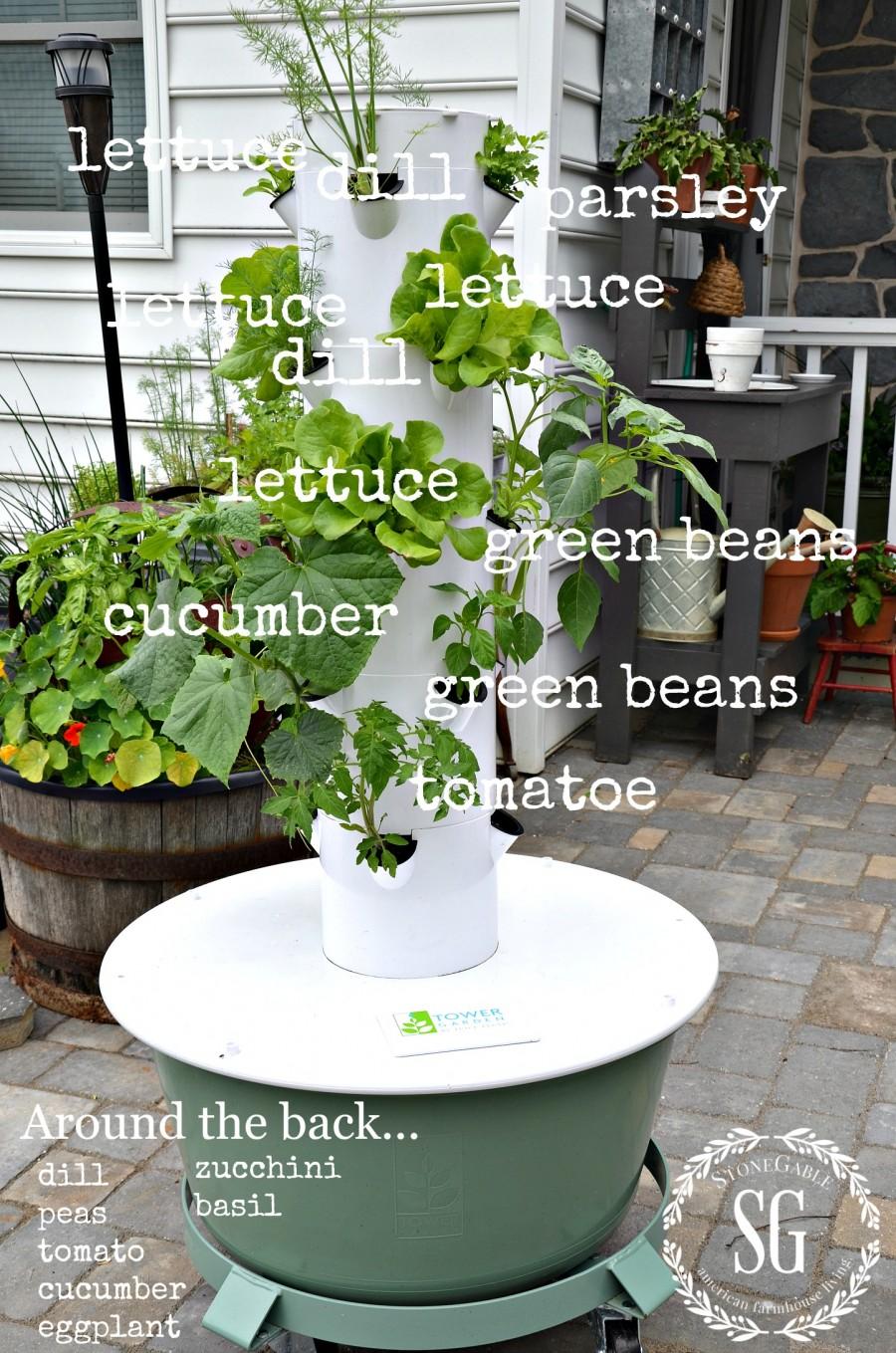 TOWER GARDEN-growing veggies and herbs-stonegableblog.com