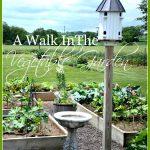 A WALK IN THE VEGETABLE GARDEN