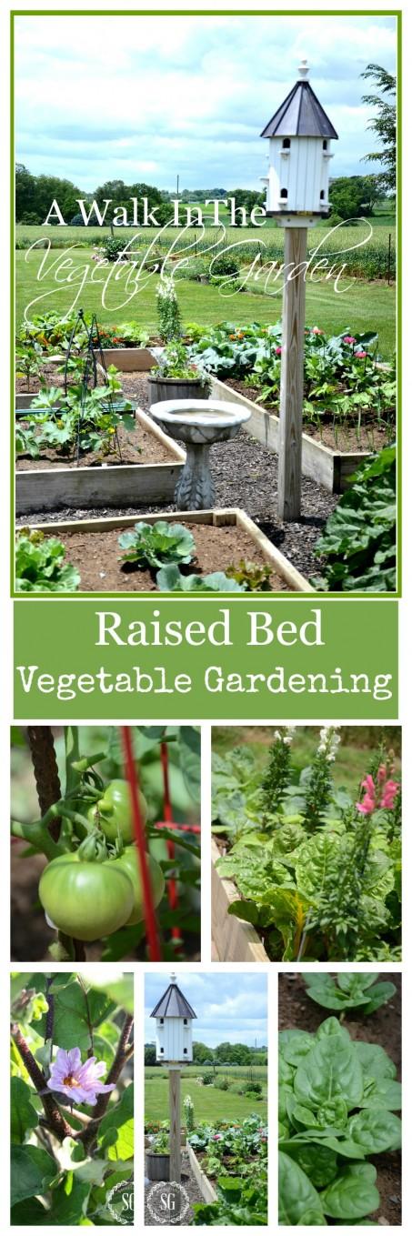 VEGETABLE GARDEN-Raised bed vegetable gardening-stonegableblog.com