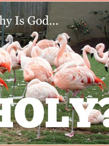 WHY IS GOD HOLY?-6-14-15-stonegableblog.com